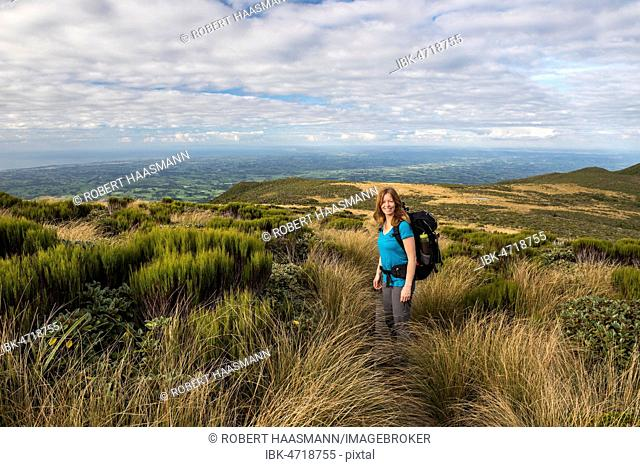 Hiker on the Pouakai Circuit Trail, Great Walk, Mount Egmont National Park, Taranaki, North Island, New Zealand