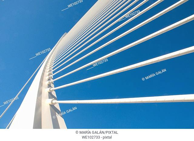 L'Assut d'Or bridge, view from below. City of Arts and Sciences, Valencia, Spain