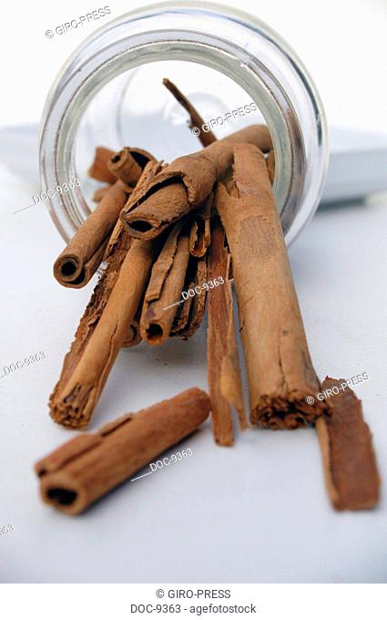 Cinnamon Cinnamomum dried inner bark of branches of the cinnamon tree