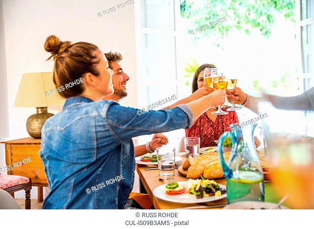 Friends dining together, making a toast