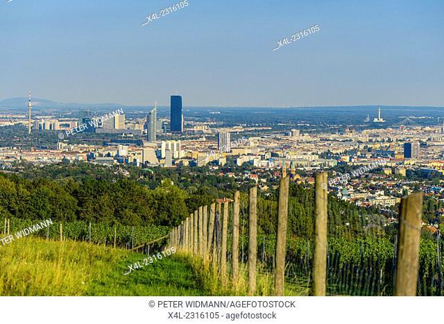 Wien, view from moutain Am Himmel, Vienna, Austria, Central Europe, 19. district, Am Himmel