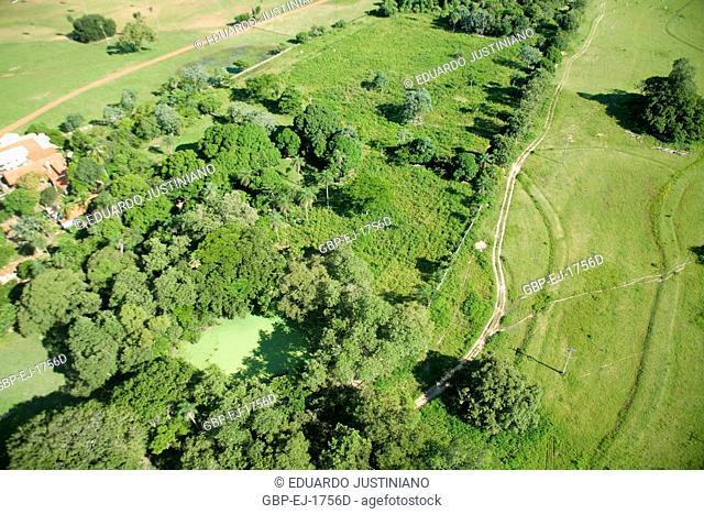 Area of Pasture with Curves of Level, Aquidauana, Mato Grosso do Sul, Brazil