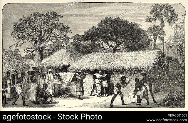 Arrival of Dr David Livingstone in the village of Tchitammbo, Africa in 1873. The Last Journals of David Livingstone Scottish missionary and explorer, 1866-1873