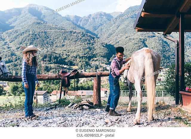 Young man grooming horse in rural equestrian arena, Primaluna, Trentino-Alto Adige, Italy
