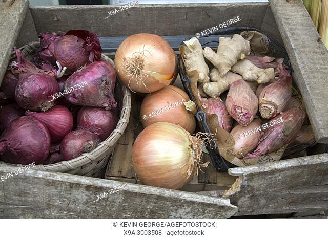 Onion and Ginger for Sale on Market Stall