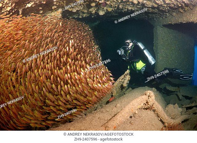 "A diver and Glassy Sweepers (Pempheris schomburgkii) in the ship's hold shipwreck """"SS Dunraven"""", Red Sea, Egypt"
