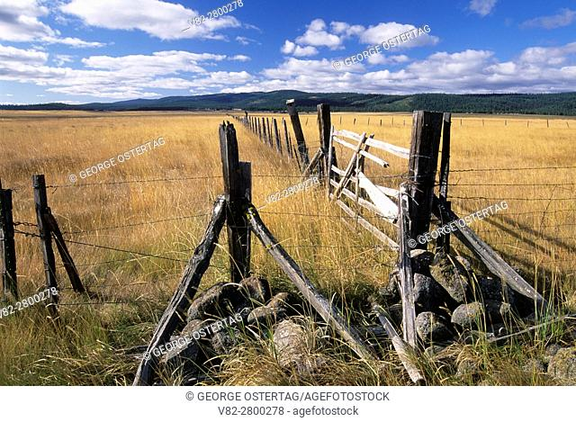 Logan Valley with ranch fence, Malheur National Forest, Oregon