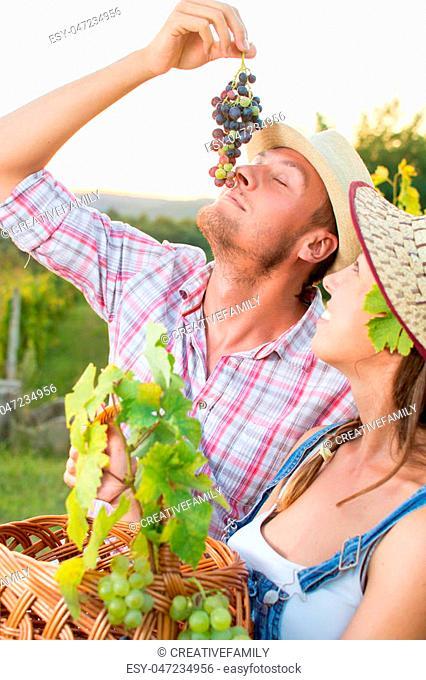 Young farmer enjoying fresh grapes at vineyard