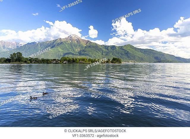 Monte Legnone from the shore of Lake Como, Sorico, Como province, Lombardy, Italy