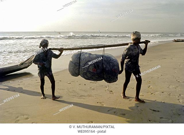 Fishermen carrying their catch, Marina Beach, Chennai, Madras, Tamil Nadu