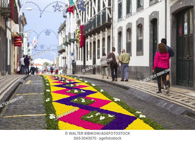Portugal, Azores, Sao Miguel Island, Ponta Delgada, Festa Santo Christo dos Milagres festival, street designs for the holy procession made with templates and...