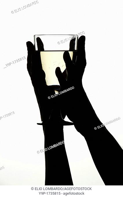 Woman's hands holding a glass of white wine