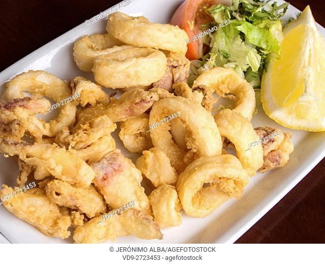 Fried squid on a plate with salad tomato and lemon. Málaga, Costa del Sol, Andalusia Spain. Europe