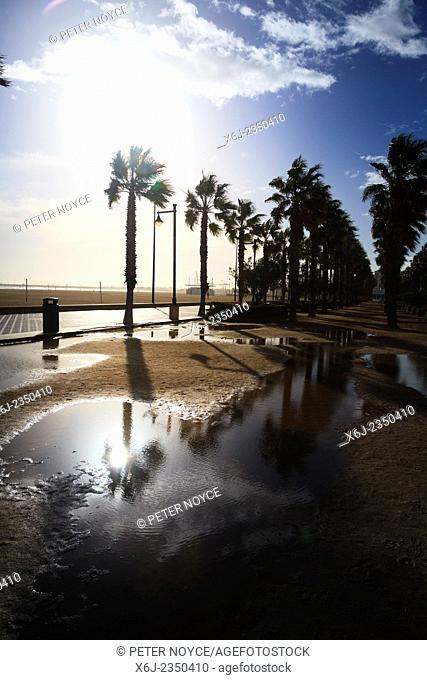 Winter sun after rain reflects off large puddles on Valencia promenade