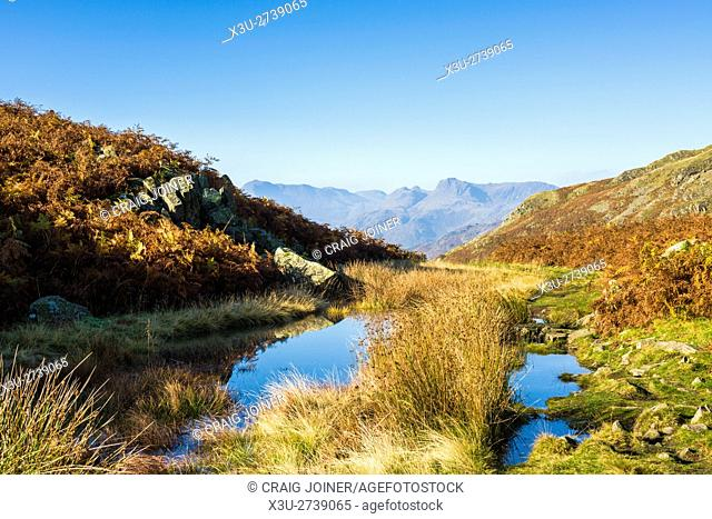 The Langdale Pikes viewed from Loughrigg Fell in the Lake District National Park. Cumbria. England