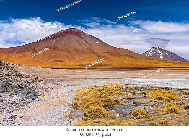 On the edge of Laguna Blanca, 4,331 m altitude, Andina Eduardo Abaro National Park, Altiplano, Departamento Potosí, Bolivia