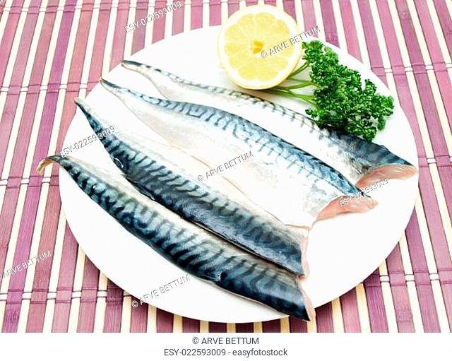 Raw mackerel fish filet