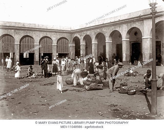 The market, San Juan, Puerto Rico, circa 1900