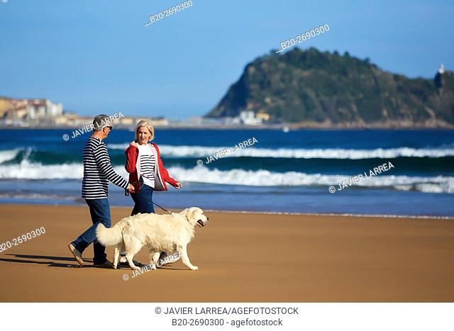 Senior couple, 60-70, Walking with dog on the beach, background Getaria, Zarautz, Gipuzkoa, Basque Country, Spain, Europe