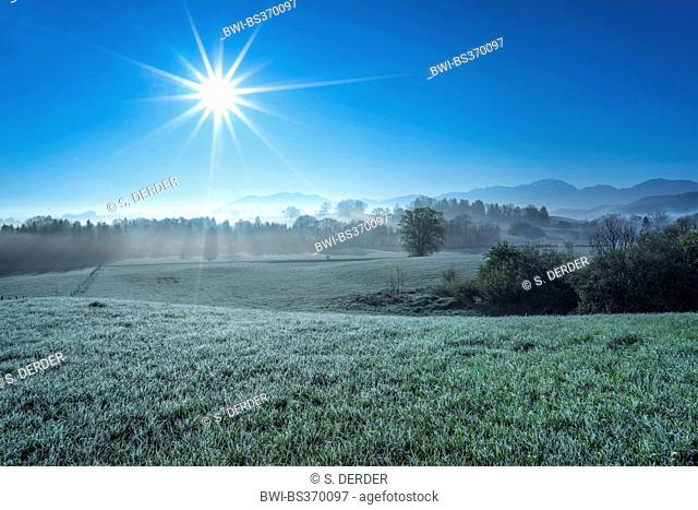 morning mist with hoar frost and view onto the Karwendel mountains near Habach, Germany, Bavaria, Oberbayern, Upper Bavaria