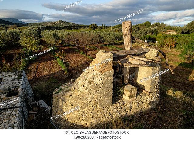 Old traditional ferris wheel, possessió Son Mas - Pla del Rei, Mallorca, balearic islands, spain, europe