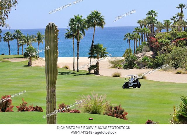 Mexico, Baja California, Los Cabos, Palmilla golf course
