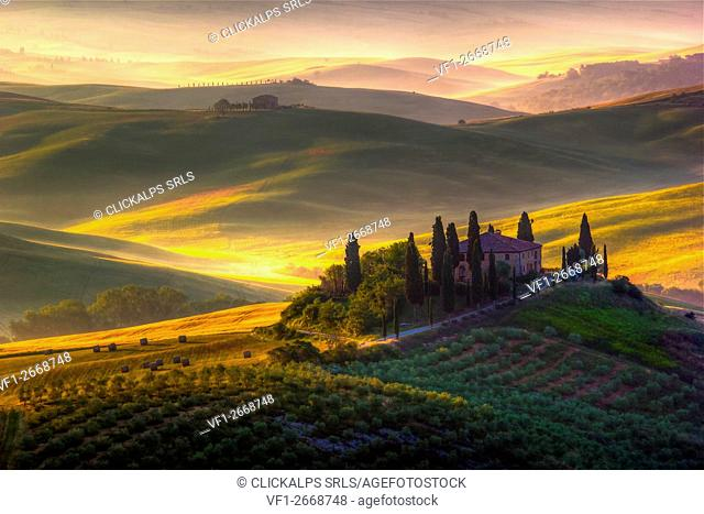 A beautiful farmhouse surrounded by cypress trees and the golden hills of Val d'Orcia
