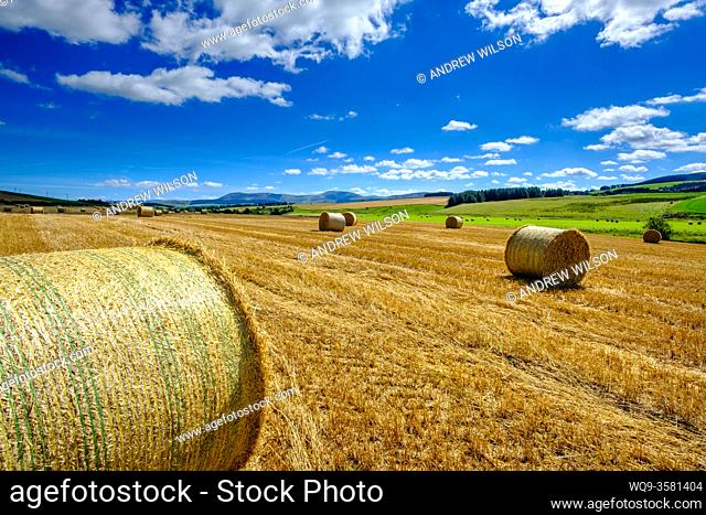 Straw Bales in a field in South Lanarkshire, Scotland near the village of Thankerton