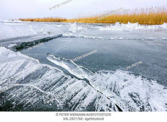 Neusiedler See in winter, Europe's largest natural ice skating rink, Burgenland, Austria, Europe