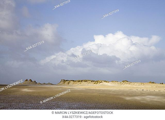 dunes on Wadden Sea coast, Terschelling island, Netherlands