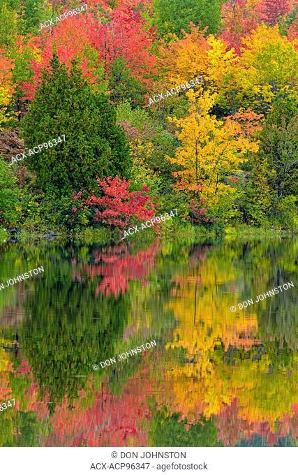 Autumn foliage reflected in the Vermilion River, Greater Sudbury, Ontario, Canada