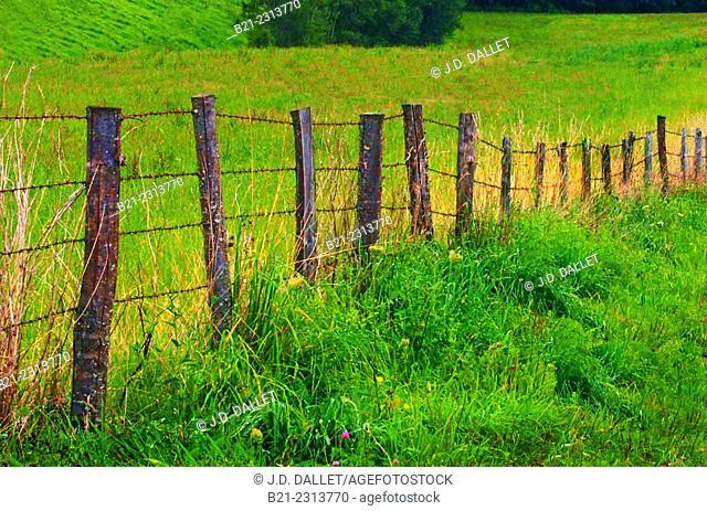 Landscape by Saint Constant, Cantal, Auvergne, France