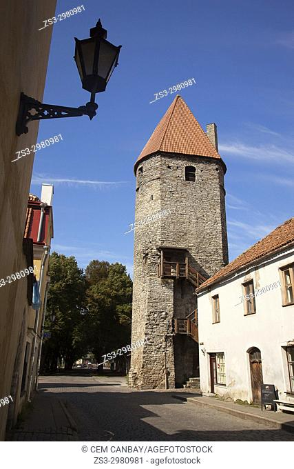 Ancient tower in the old town,Tallinn, Estonia, Baltic States, Europe