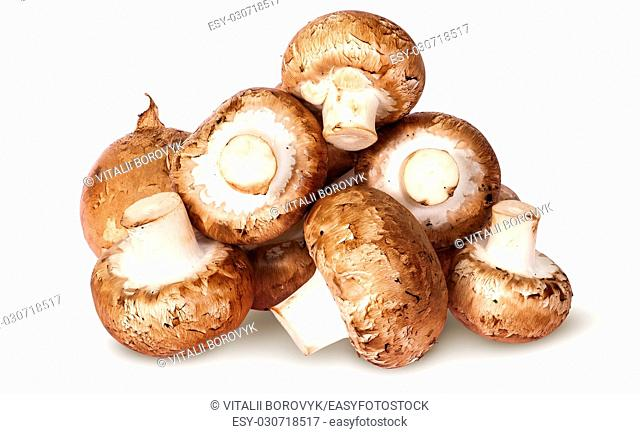 Pile of fresh brown champignon top view isolated on white background