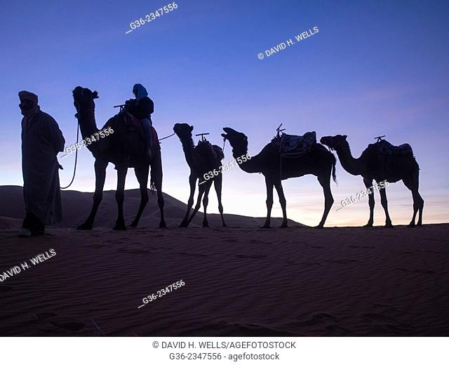 Silhouette of tourist riding camel at desert in Erg Chebbi, Morocco