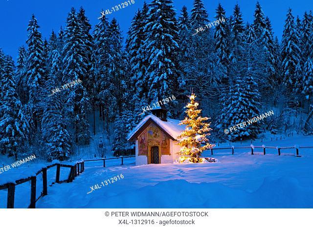 Chapel with illuminated christmas tree in Upper Bavaria, Bavaria, Germany