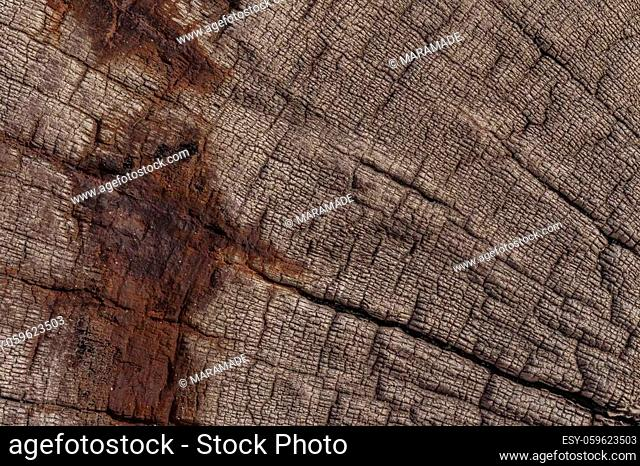Wooden background from a shipwreck in the Skeleton Coast in Namibia in Africa