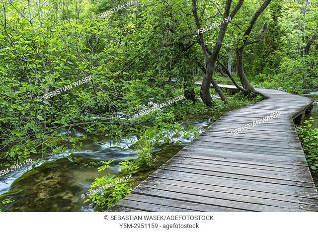 Wooden bridge in the Krka National Park, Lozovac, Šibensko-Kninska, Dalmatia, Croatia, Europe