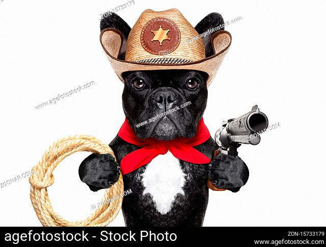 western cowboy with rope , red scarf and pistol