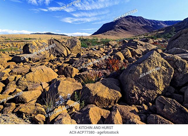 TABLELANDS. Peridotite rock is rare at earth's surface and reason for World Heritage Site designation by UNESCO. Gros Morne National Park, Newfoundland