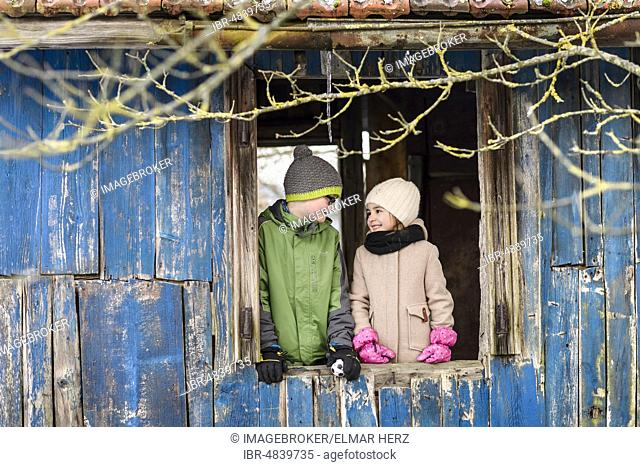 Girl, 4 years, boy, 10 years, siblings standing at the window in a wooden hut, Baden-Württemberg, Germany, Europe