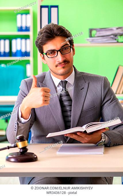 Young handsome lawyer working in the office