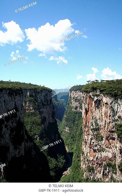 panoramic view, Aparados da Serra, Cambara do Sul, Rio Grande do Sul, Brazil