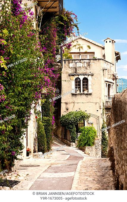 Vine covered homes along ancient street in St  Paul de-Vence, Provence France