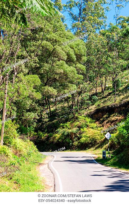 The Blackpool-Ambewela-Pattipola-Horton Plain Road leads across dry woodlands and moist broadleaf forests to the Horton Plains and Worlds End