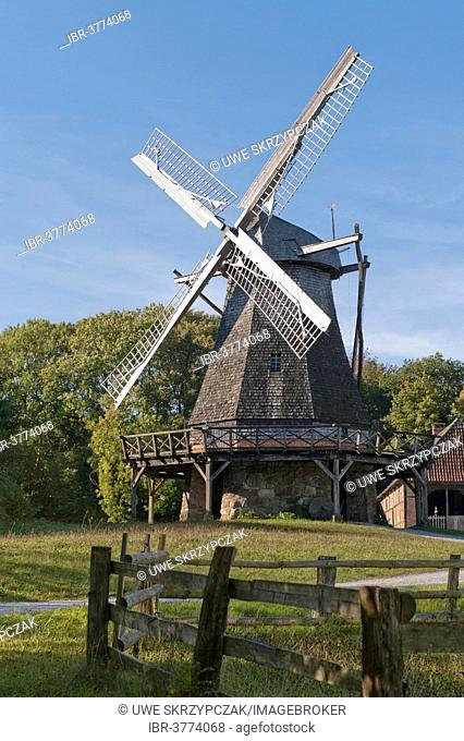 Historic stock windmill dating from the 18th century in autumn, Freilichtmuseum Detmold or Open-Air Museum Detmold, North Rhine-Westphalia, Germany