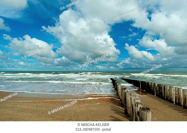 Wooden breakwater and seascape, Domburg, Zeeland, Netherlands