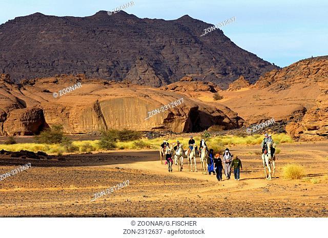 Eine Gruppe Touristen mit Dromedaren auf einer Exkursion im Akkakus-Gebirge, Sahara, Libyen / A group of tourists with dromedaries on an excursion in the Acacus...