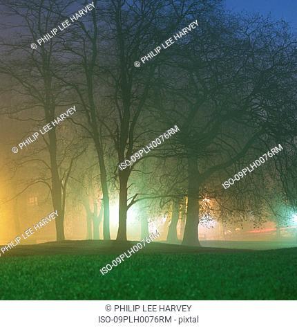 Park at night through haze