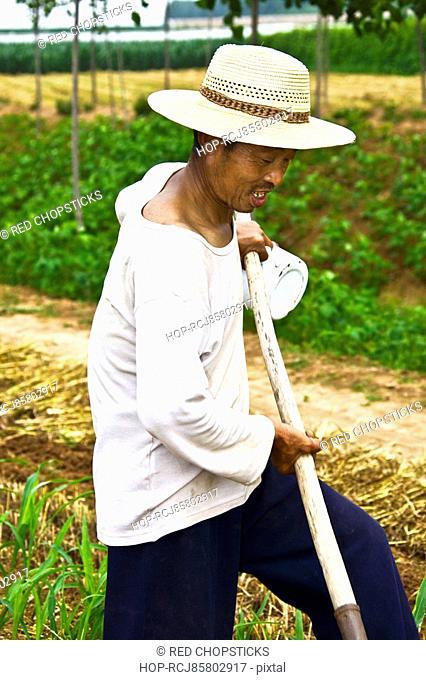 Mature man working in a field, Zhigou, Shandong Province, China